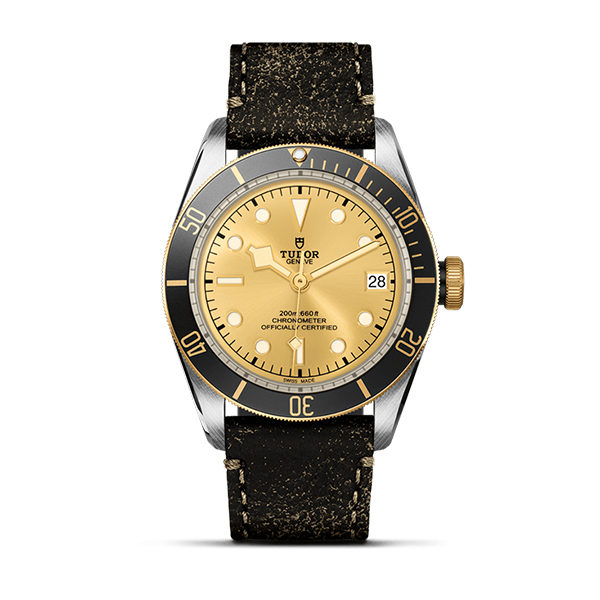 Tudor-Montre-Black-Bay-S&G-Hall-of-Time-Brussel-4758-m